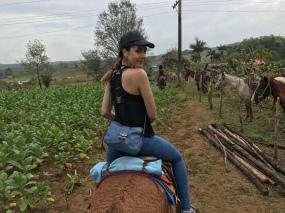 Horseback riding through tobacco fields